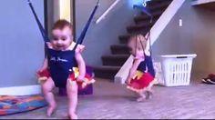 Cute Babies Dancing Funny Video Clip   Funnyho.com