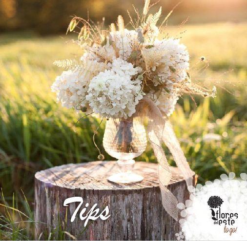 Tips para el cuidado de tus hortensias: Tip nùmero1. Asegùrate de que el florero estè limpio y que sea de vidrio#hortensias #flores #decoración #diseño #elegancia #floresdelestetogo #floresdeleste