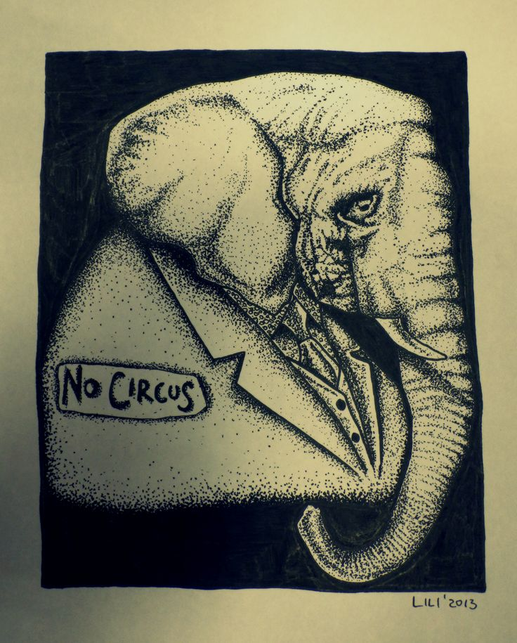 No Circus