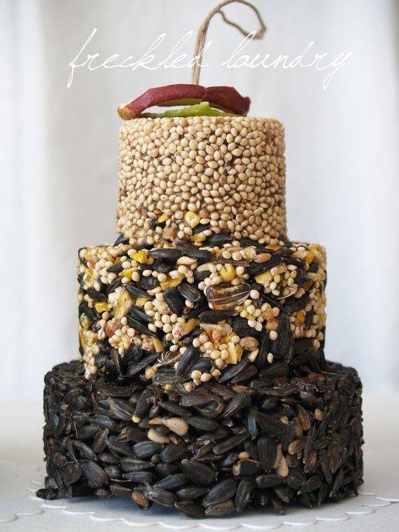 gourmet bird seed cake
