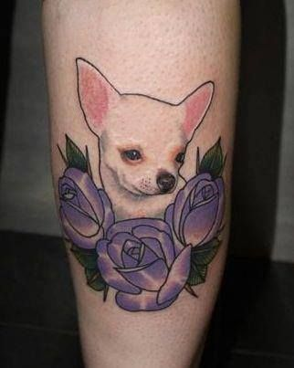 This looks a lot like my dog, whom I plan on getting a tattoo of.   Danielle Rose