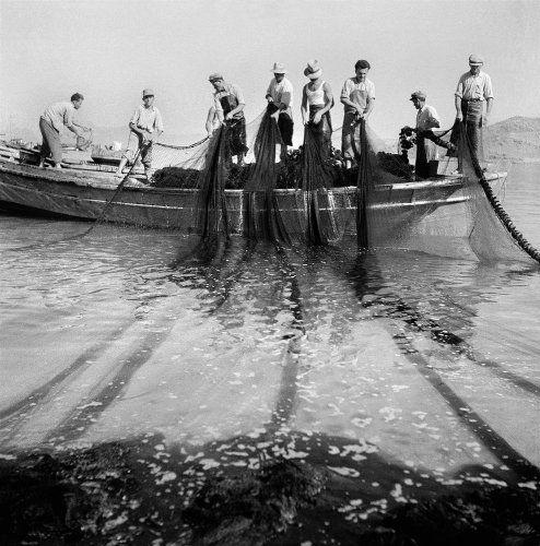 Μύκονος, Ψαράδες μαζεύουν δίχτυα. 1950-1955 Βούλα Θεοχάρη Παπαϊωάννου