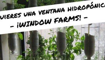 Ten una ventana hidropónica: Window Farms