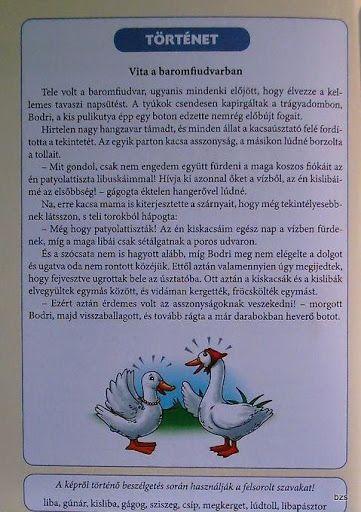Deákné B. Katalin Háziállataink - Kiss Virág - Picasa Web Albums