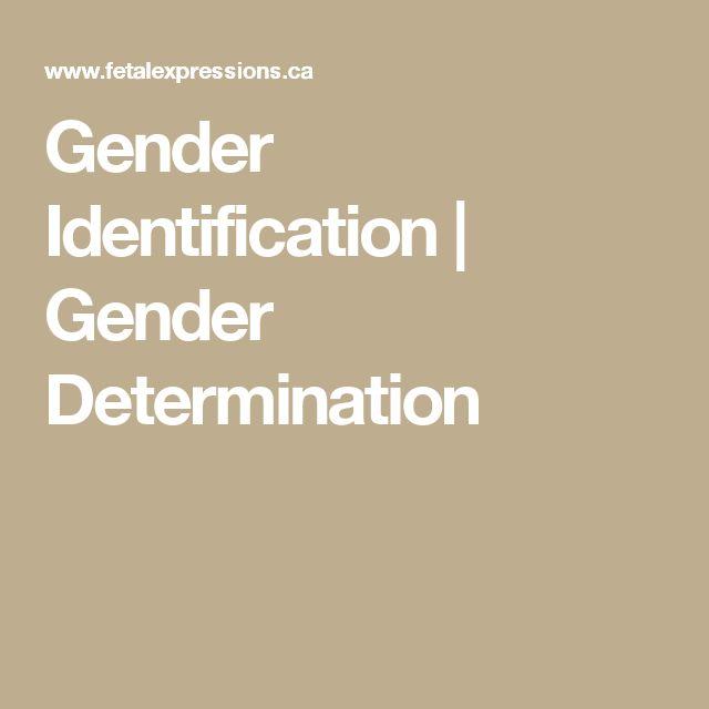 Gender Identification | Gender Determination