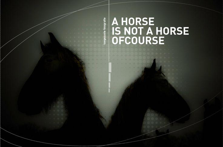 horses. Design: www.peschdesign.nl client: arnoruttenart.com