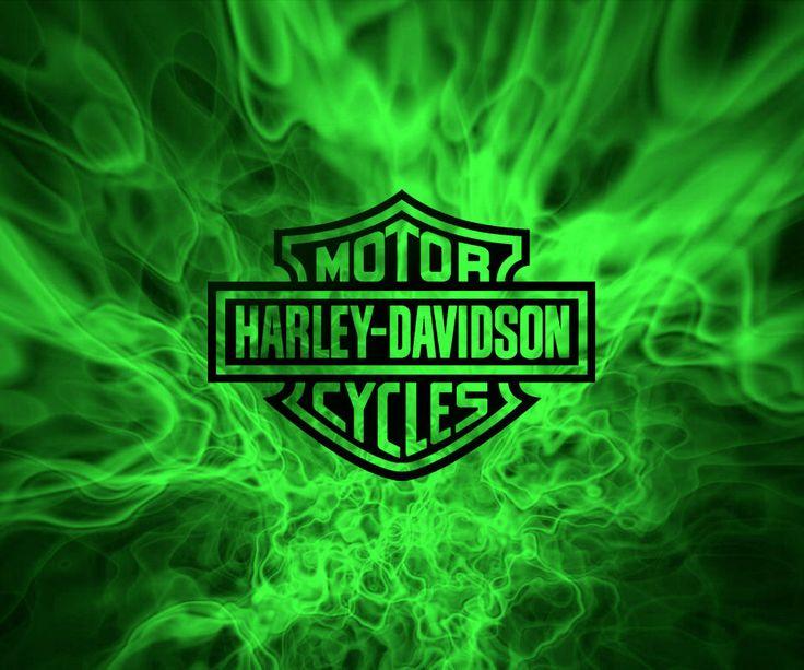 Best 25 Harley Davidson Logo Ideas On Pinterest Harley