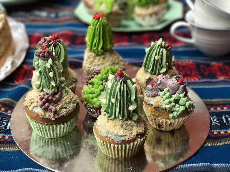 Cupcakes cactus suculentas