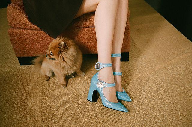 Весь мир у ваших ног: модные девушки и их любимые туфли Louis Vuitton