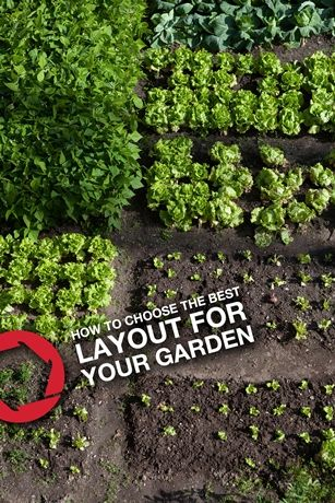 17 Best ideas about Garden Layouts on Pinterest Flower