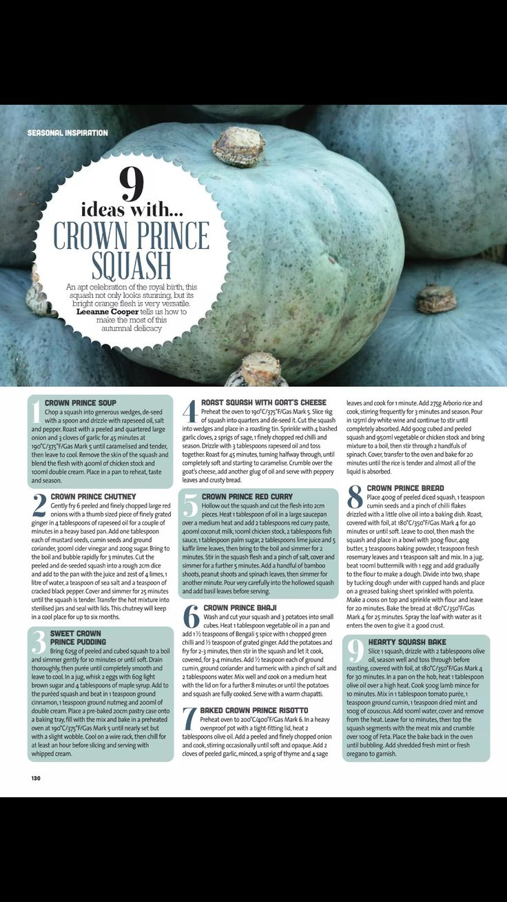 9 ideas with crown Prince squash
