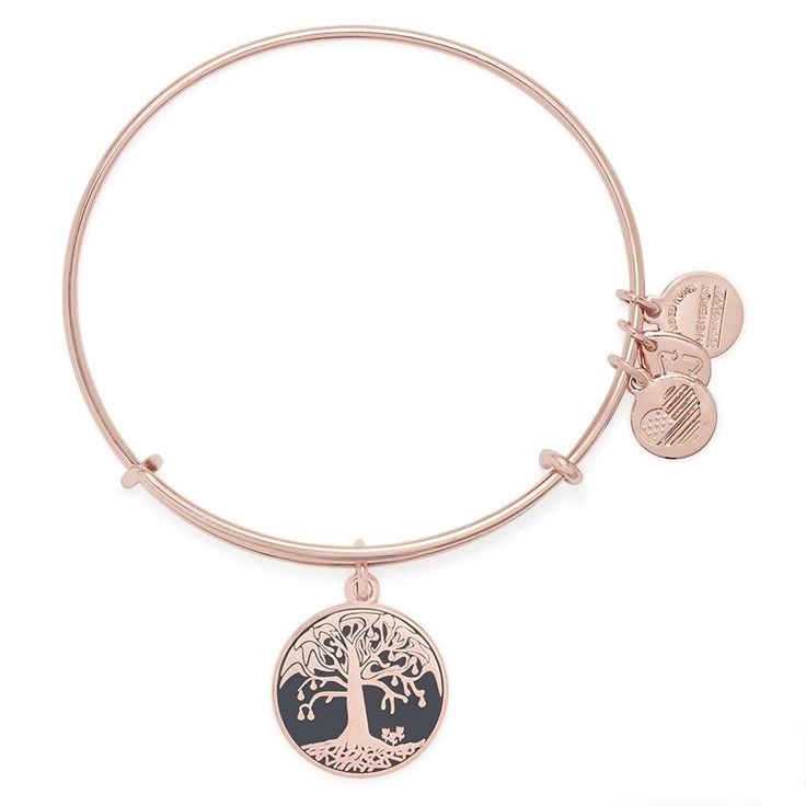 1000 images about alex and ani on pinterest bracelets for The universe conspires jewelry