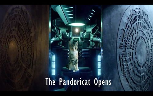 Doctor Who. Cats. Who could ask for much more?