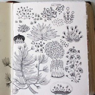 keep drawing, use a book to colllect scribbles,doodles, notes and sketches .  Becca Stadtlander sketchbook