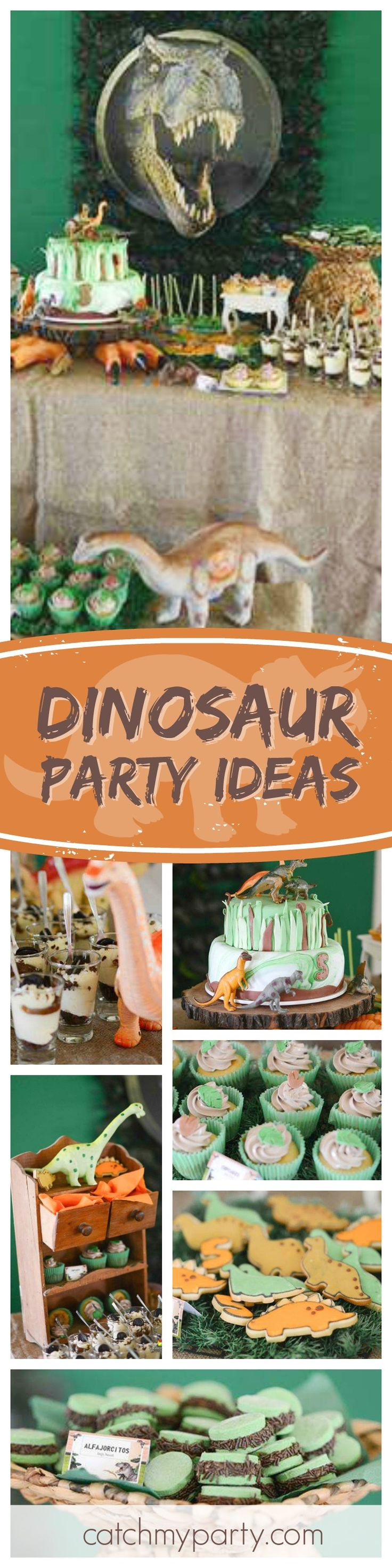126 best RAWR Adult Dinosaur Birthday Party Inspiration