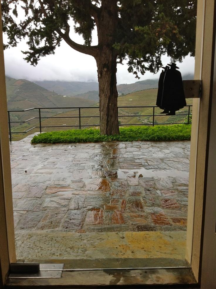 Sandeman's Quinta do Seixo, Douro Valley | spaswinefood