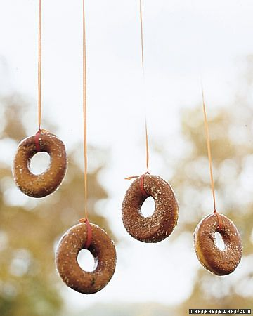 fun game for the kids, hang donuts on a string from a tree. have the kidos try to eat them with out using hands.