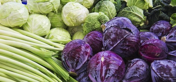 10 Foods To Fight CandidaKathy Miller-Chaney