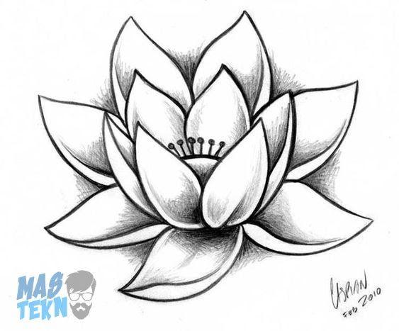 14 Gambar Lukisan Pensil Bunga Mawar 40 Gambar Sketsa Bunga Indah Mawar Matahari Tulip Download Sketsa Bunga Lukisan Bu Lukisan Bunga Bunga Teratai Sketsa