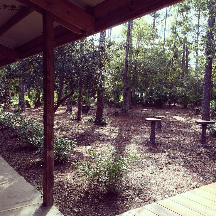 Garden area right next to Cielo Blu Barn.