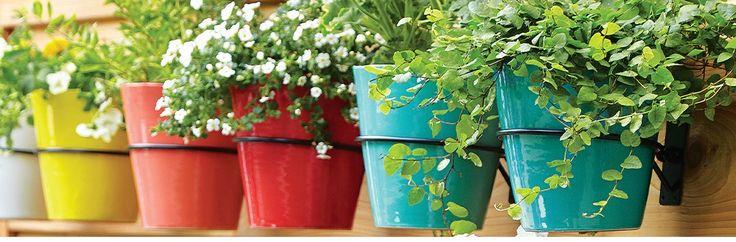 Garden Tools, Planters & Accessories | Crate and Barrel