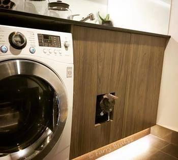 お客様もあまり足を踏み入れない洗面所は、猫ちゃんのトイレを設置するのには絶好の場所。砂やチップの片づけも、匂いのこともあまり気にしなくてすみます。