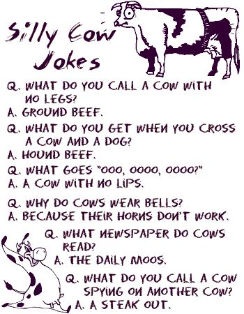 cow joke :) *adore* corny jokes. Grew up hearing these from my dad!