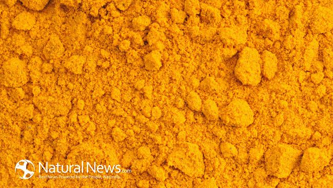 Only few people know that the combination of turmeric and honey is an invaluable natural remedy: http://blogs.naturalnews.com/turmeric-golden-honey-use-strongest-natural-antibiotic/