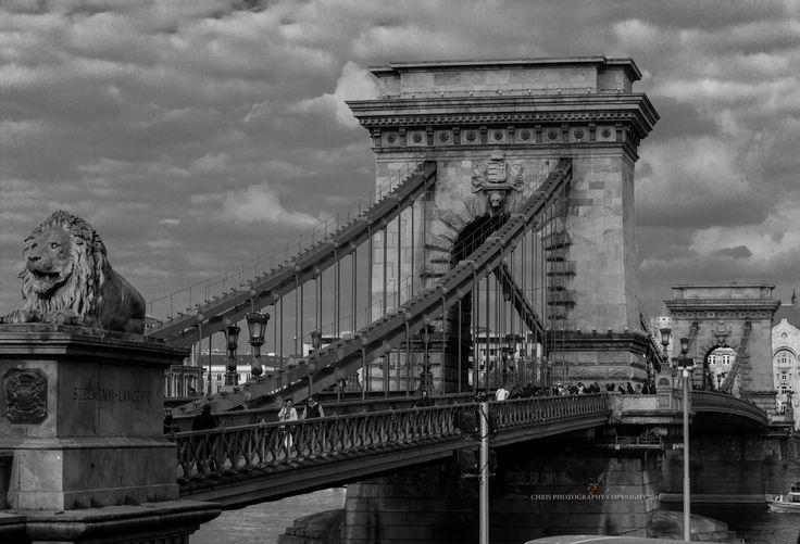 Chain Bridge Buda - null