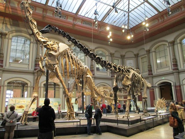 Love in the Time of Chasmosaurs: Mighty Bones: Museum für Naturkunde, Berlin