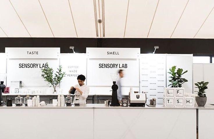 Sensory Lab Coffee