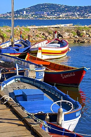 Old fishing boats, Etang de Thau Museum, Bouzigues, Thau basin, Sete town in the background, Herault, Languedoc, France, Europe