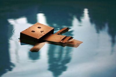 danboard | cute, danbo, danboard, submerge, water - inspiring picture on Favim ...