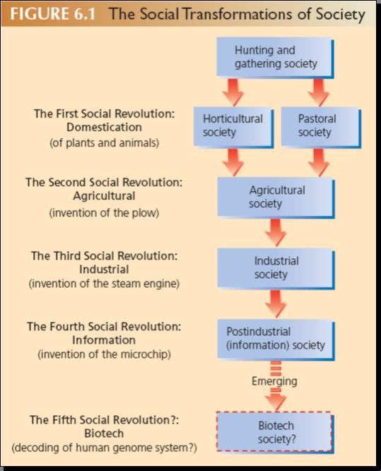 Social Transformations Of Society
