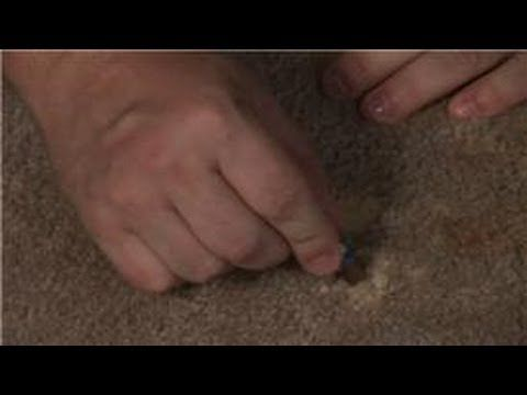 How to Get Bleach Spots Out of Carpeting Fast | Dengarden