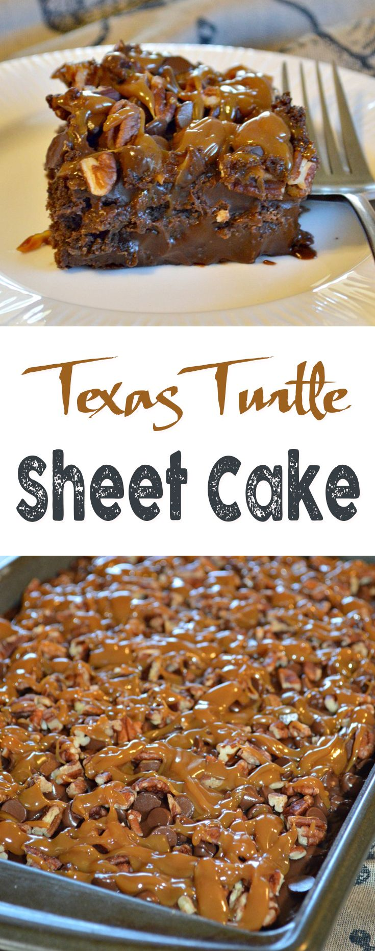 Texas Turtle Sheet Cake                                                                                                                                                                                 More