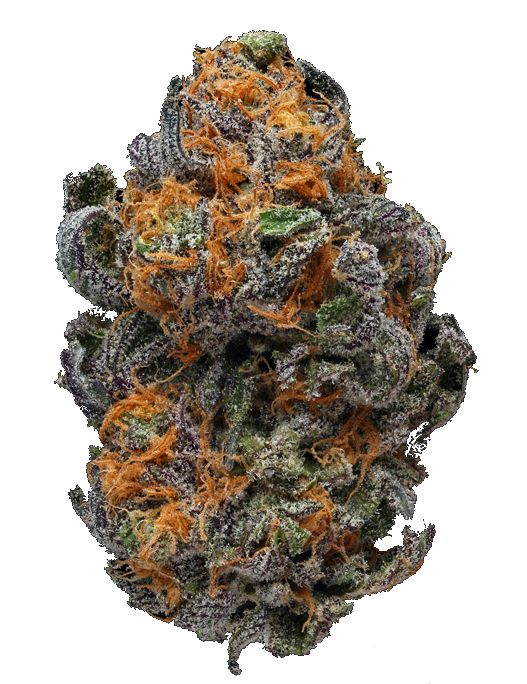 WE TREAT CANCER,DEPRESSION,PAINS AND MANY OTHER ILLNESS, JOINTCANNABISDISPENSARY IS THE NUMBER ONE FAST,FRIENDLY,DISCREET,RELIABLE TOP DISPENSARY.Buy Marijuana Online | Order Weed Online |Buy Marijuana Online, Buy Cannabis Oil Online , THC, CBD Oil, hash,wax,shatter for sale,,weed For sale, oil,THC,CBD,Concentrate .contact info Go to..https://www.jointcannabisdispensary.com Text or call +1(408)909-1859
