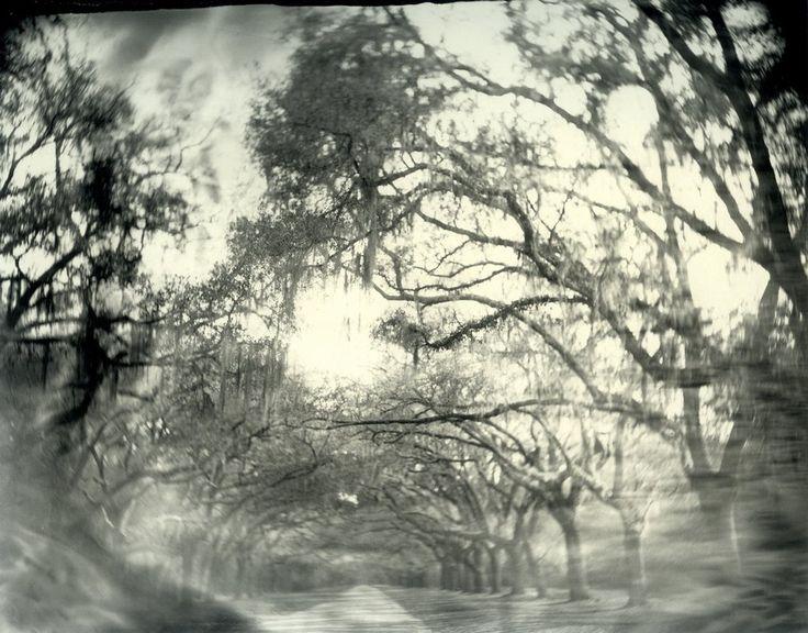 Салли Манн. Серия Таинственный юг
