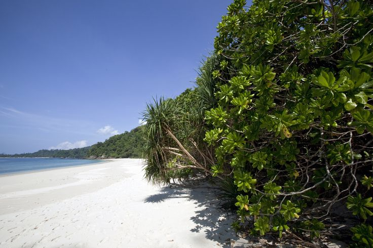 A beach on Lampi Island, the largest in the southern Mergui Archipelago