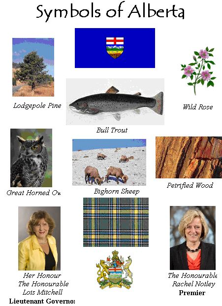 CanadaInfo: Images & Downloads: Fact Sheets to Download: Provincial & Territorial: By Province: Alberta Symbols