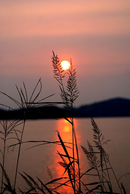 Sunset by floridapfe, via Flickr