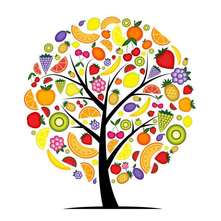 nutricion - Buscar con Google