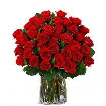 3 Docenas de Rosas