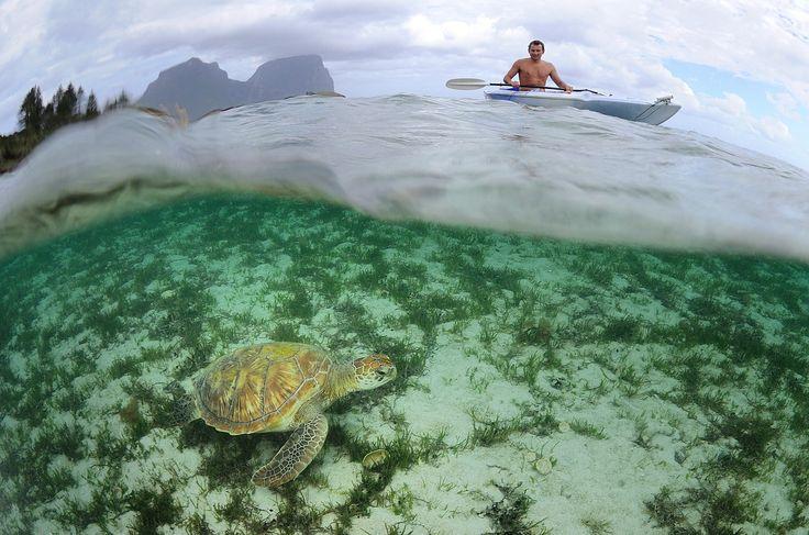 Top Ten Attractions of Lord Howe Island