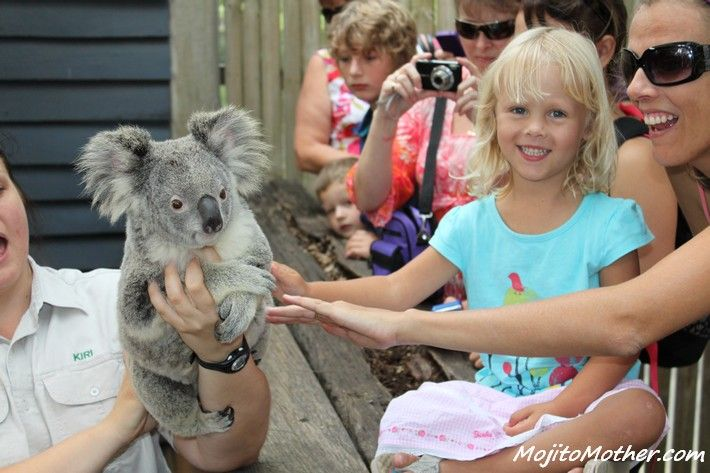 5 Gold Coast Theme Parks in Australia - which one is best for your family? Tips on the blog!