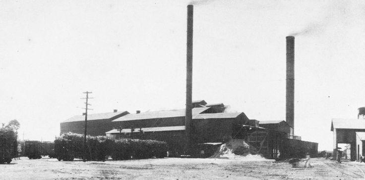 Central Rufina, Guayanilla, Puerto Rico. Operó entre los años 1901 y 1967. Capacidad: 4,000 toneladas por día. Propietarios: Mario Mercado é Hijos (1901).