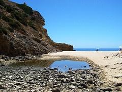 Praia da Videira