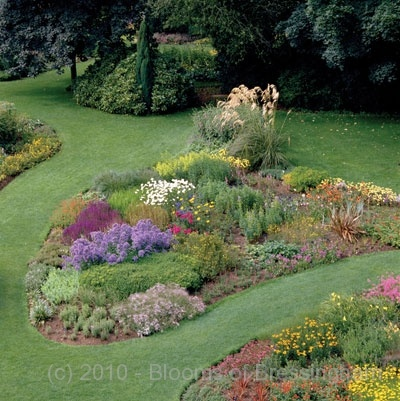 17 best images about garden island bed on pinterest the for Garden design and planting