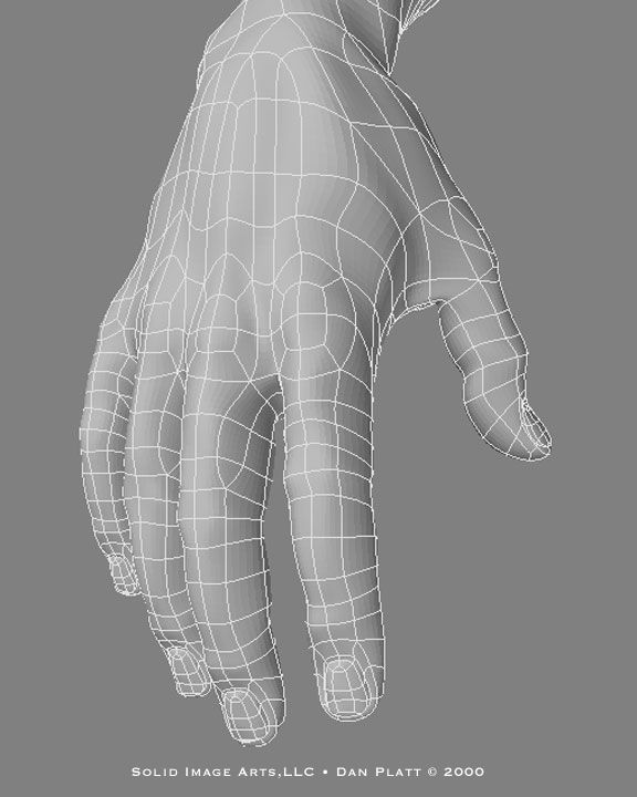 Hand wireframe from the top