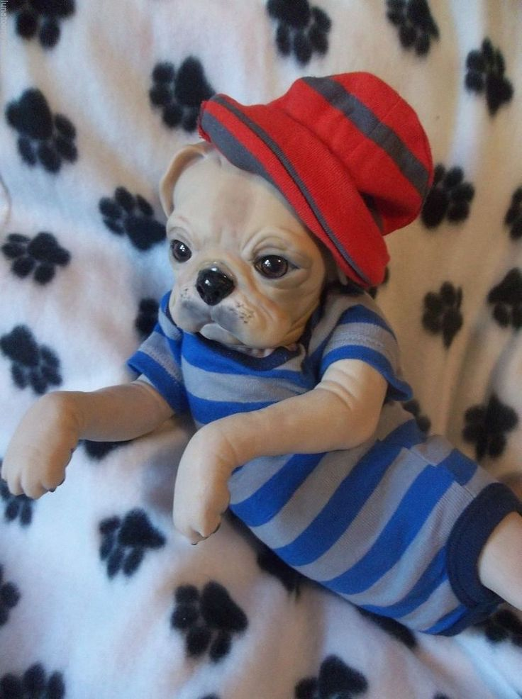 Top 25 Ideas About Reborn Puppies On Pinterest Baby